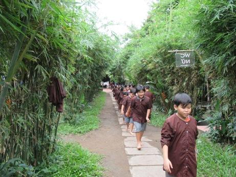 Tree Farm 002