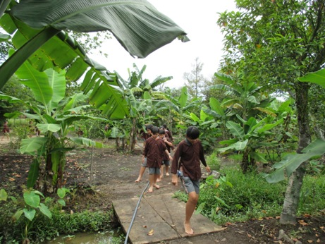 Tree Farm 003