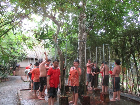 Tree Farm 006