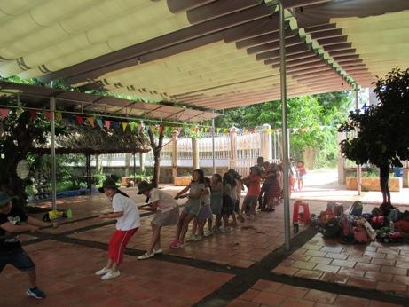 Tree Farm 012